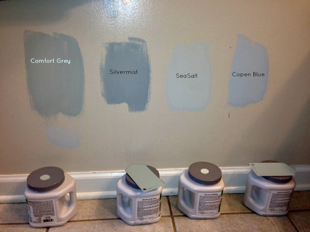 Sherwin Williams Paint Samples bathroom web