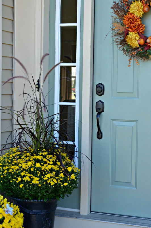 Fall view of the door with new hardware